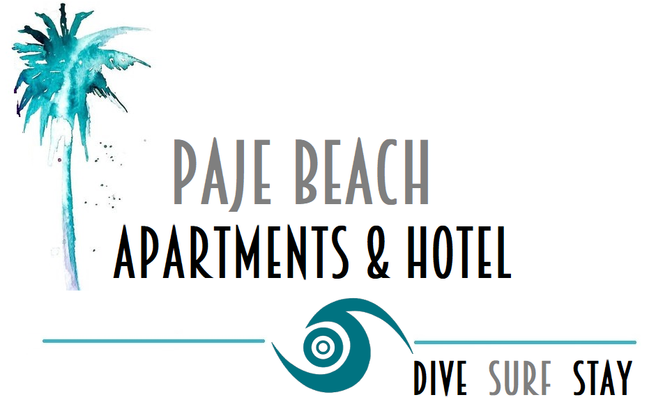 Paje Beach Apartments & Hotel | Beach Side Stays in Zanzibar